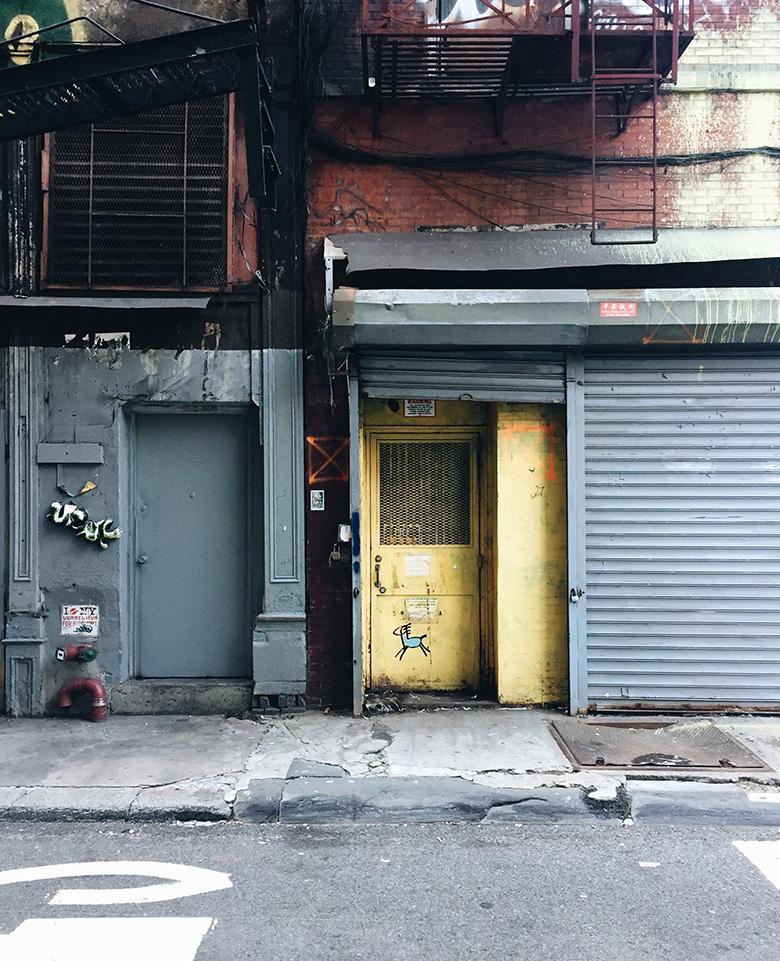 Chinatown New York Stati Uniti